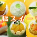 柑橘スイーツ特集